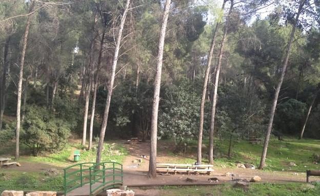 נחל פרוד, מקומות למנגל (צילום: ליאור מנלה)
