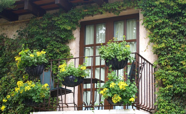 מרפסת, מעקה, פרחים צהובים, צילום עופר פאול (צילום: עופר פאול)