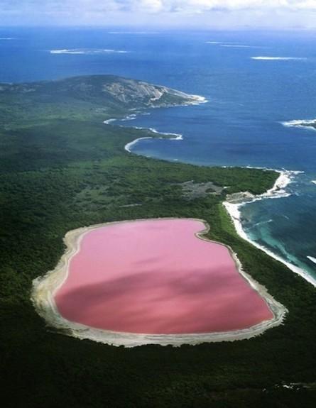 האגם הוורוד אוסטרליה