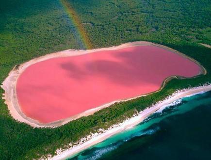 מלמעלה, האגם הוורוד באוסטרליה