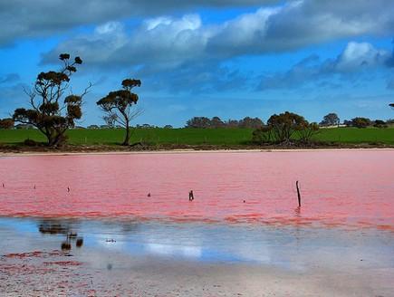 עוד מבט מקרוב, האגם הוורוד באוסטרליה