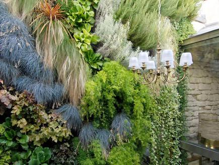 דירה בפריז, צמחייה