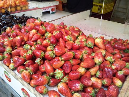 שוק הכרמל: תותים בתפזורת (צילום: דנה בר-אל שוורץ, אוכל טוב)