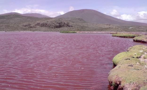 אגם אדום