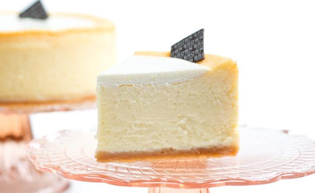 עוגת גבינה בראון צלם שי בן אפרים