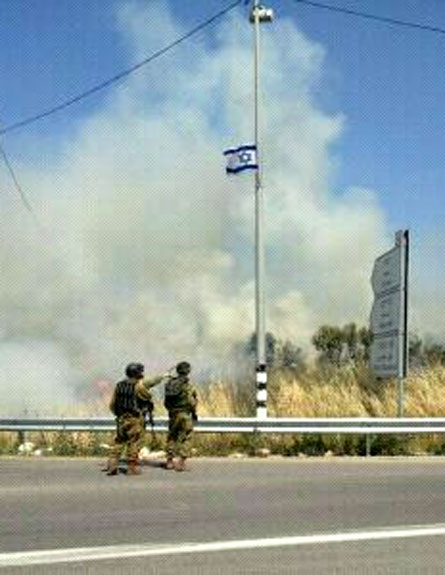 הוצתו שדות ועצים של פלסטינים (צילום: הצלה יהודה ושומרון)