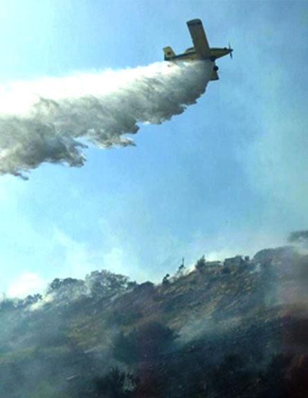 מטוס כיבוי מעל שריפה באלפי מנשה, היום (צילום: המייל האדום)