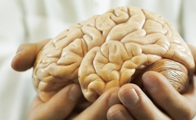 איש מחזיק מוח (צילום: Thinkstock)