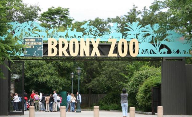 גן החיות של הברונקס, ניו יורק עם הילדים (צילום: אימג'בנק / Thinkstock)