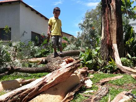 במהלך החג: ברק גרם לנזקים בכפר ידידיה