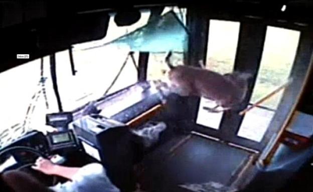 אייל תקוע באוטובוס