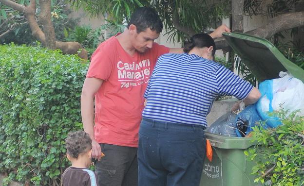 אבי גרייניק מחטט בזבל (צילום: רועי קסטרו)