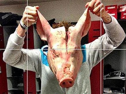ראש החזיר שגרם למהומה (צילום: ספורט 5)