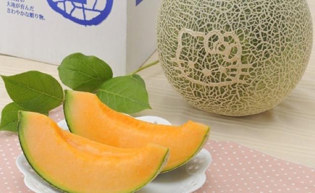 מלון הלו קיטי (צילום: מתוך האתר kotaku.com)