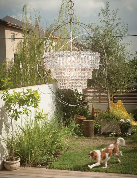 מעיין אשכנזי, חצר (צילום: דודי ארדון)