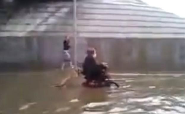 כלב דוחף נכה בכיסא גלגלים בזמן שיטפון