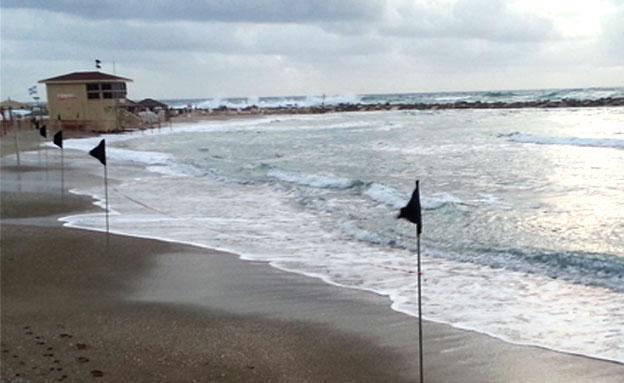 """חוף בת""""א. ארכיון (צילום: מורן כץ)"""