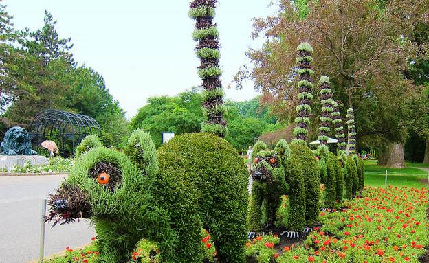 הגן הבוטני, למור laughingsquid (1) (צילום: laughingsquid)