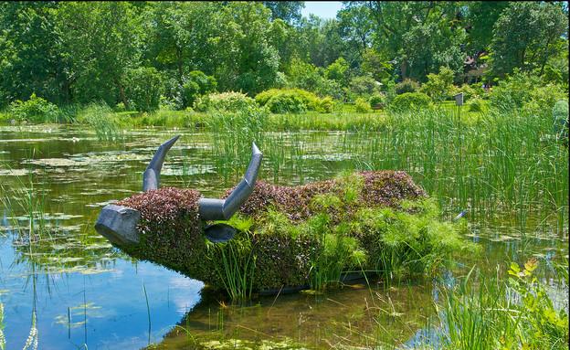 הגן הבוטני, קרנף prafulla (7) (צילום: prafulla)