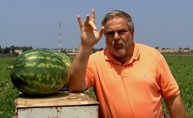 מנחם הורוביץ מגלה דברים על הפרי הקיצי (צילום: חדשות 2)