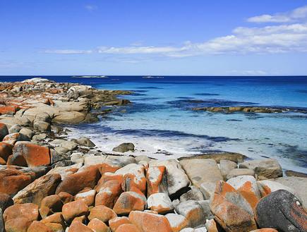 אבנים כתומות, חוף טזמניה,