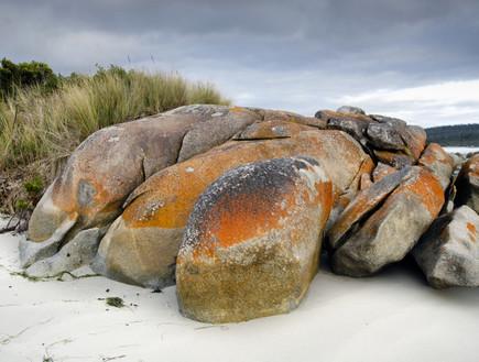סלעים על החוף, חוף טזמניה, קרדיט אימג'בנק