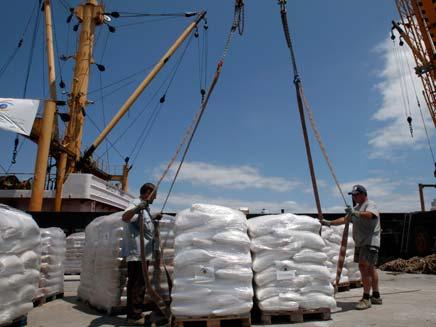 מעמיסים ציוד, אמלטיאה, הספינה הלובית בדרכה למצרים (צילום: חדשות 2)