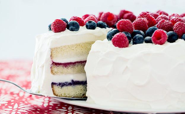 עוגת גלידה כחול לבן ואדום (צילום: מתוך אתר buzzfeed)