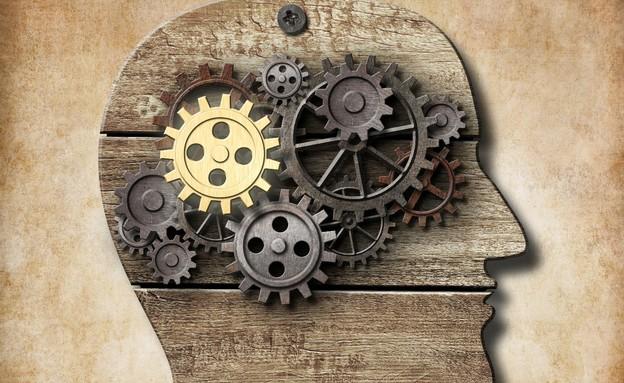 מוח עץ חושב (צילום: אימג'בנק / Thinkstock)