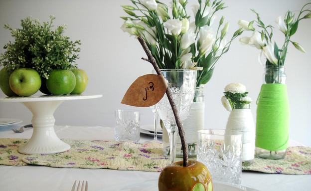 שולחן, ערוך (צילום: דידי רפאלי)