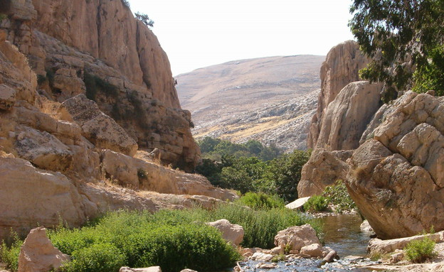 מקומות מטהרים, נחל פרת (צילום: יוחאי כורם)