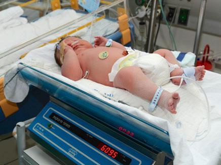 התינוק הטרי בפגייה ברמב