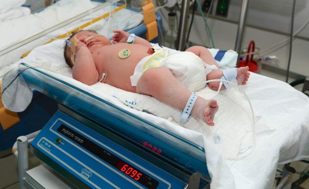 """התינוק הטרי בפגייה ברמב""""ם, היום (צילום: עופר גולן)"""