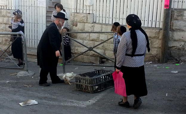 צפו בכפרות בירושלים (צילום: יוסי זילברמן, חדשות 2)