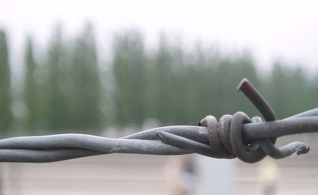 תיל במחנה ריכוז (צילום: עמית סלונים)