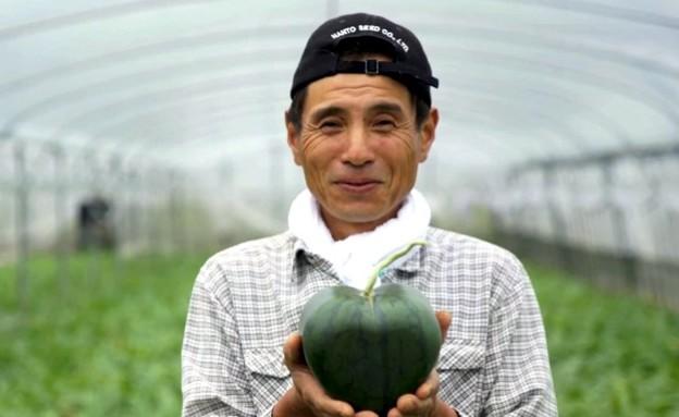 אבטיח הלב (צילום: אתר japandailypress.com, אוכל טוב)