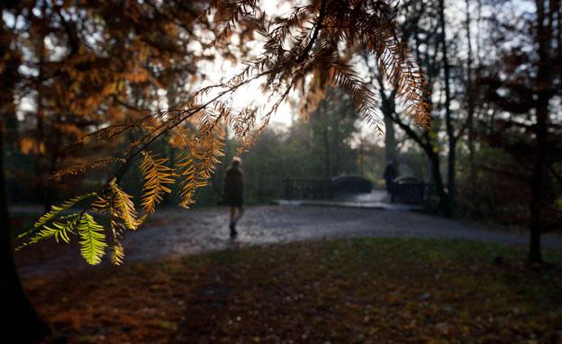 הסתיו בדרך (צילום: AP)