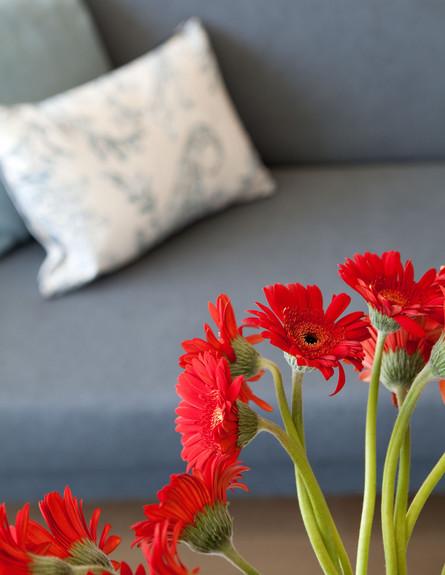 בית טופה ביפו, סלון פרחים גובה (צילום: הגר דופלט)