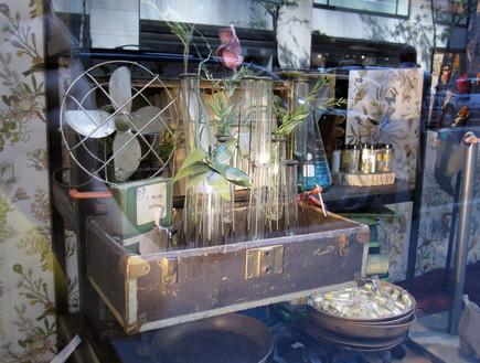 חנויות ניו יורק, אנטרופולוגי חלון ראווה (צילום: נעם רוזנבלט אלדן)