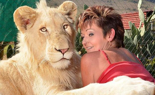 חיה עם אריה לבן (צילום: dailymail.co.uk)