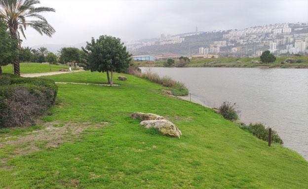 טבע עירוני בפארק נחל הקישון (צילום: דב גרינבלט, החברה להגנת הטבע)