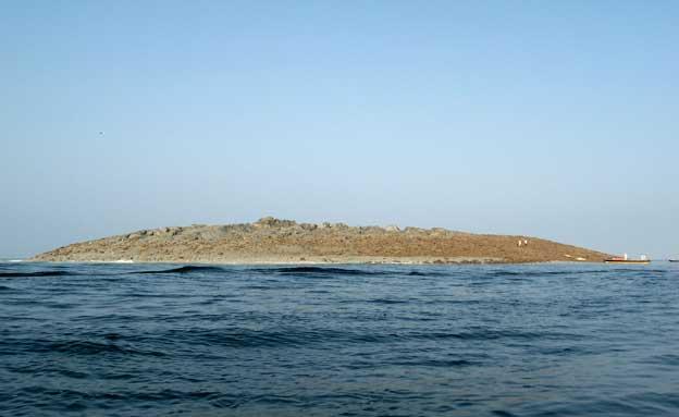 רעידת אדמה פקיסטן, אי חדש (צילום: חדשות 2)