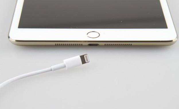 תמונה של iPad Mini 2 של אפל (צילום: פורום ZOL)