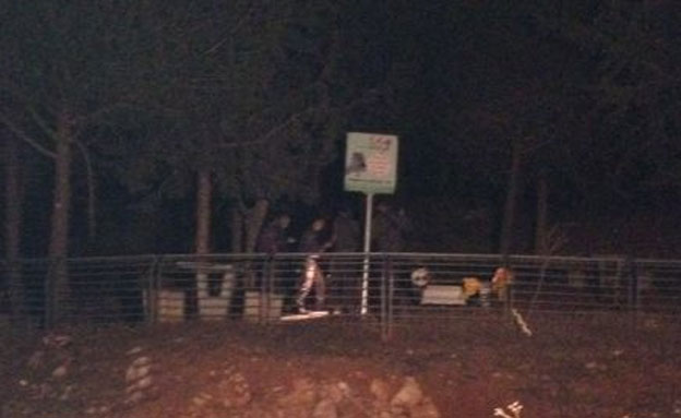 חורשת סנהדריה, הערב (צילום: חדשות 2)