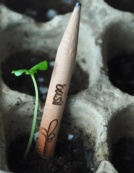 חמישייה 7.10, עפרון (צילום: www.amazon.com)