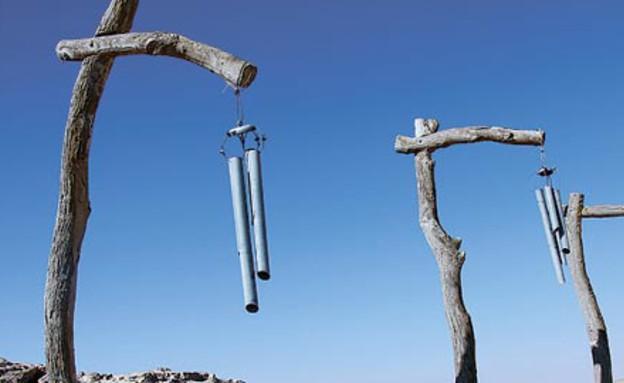 פסל סביבתי בטבע (צילום: אורלי גנוסר, גלובס)