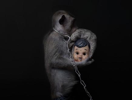 קופים עם מסיכה
