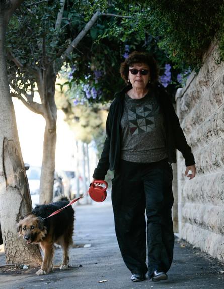 קרנית פלוג מטיילת עם הכלב, פלאש90 (צילום: פלאש 90)