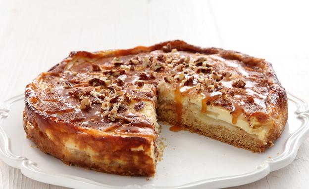 עוגת תפוחים אפויה בקרם יוגורט (צילום: דניה ויינר, דנונה, שטראוס)