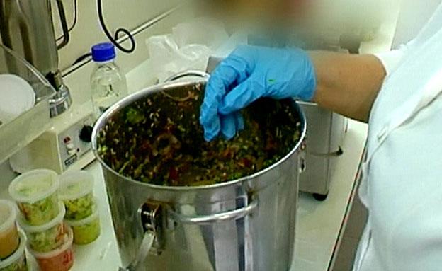 אוכל, מעבדה (צילום: חדשות 2)